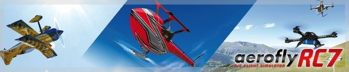 modellflug simulator